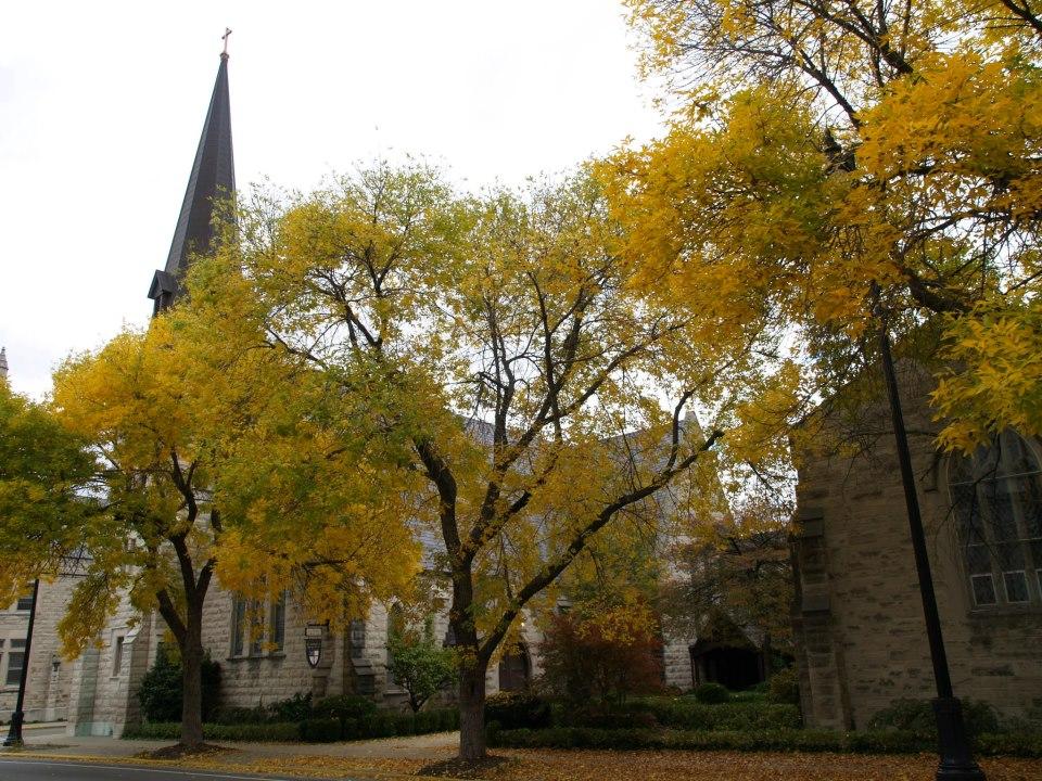 Autumn at St. Stephen's